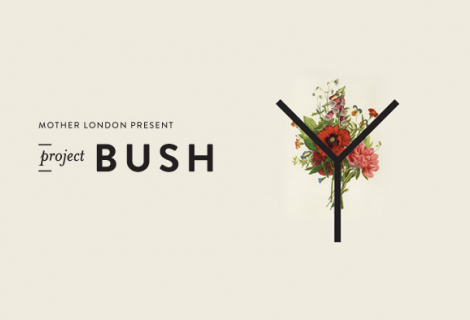 On our radar: Project Bush
